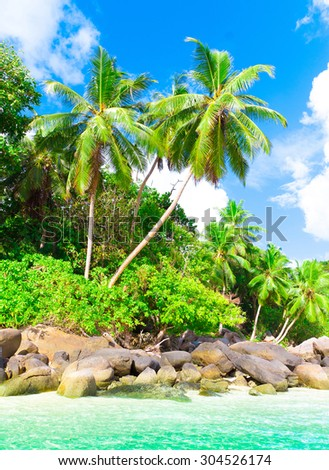 Paradise Season Exotic  - stock photo