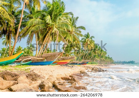 Paradise tropical beach with palms and colorful fishing boats, Sri Lanka - stock photo