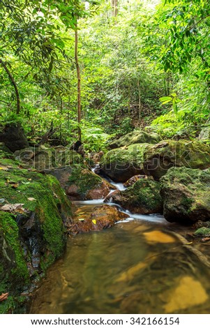 Paradise waterfall in Tropical rain forest - stock photo