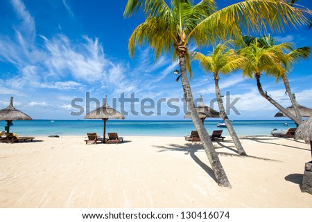 Paradise white sand beach and palm tree of a tropical island