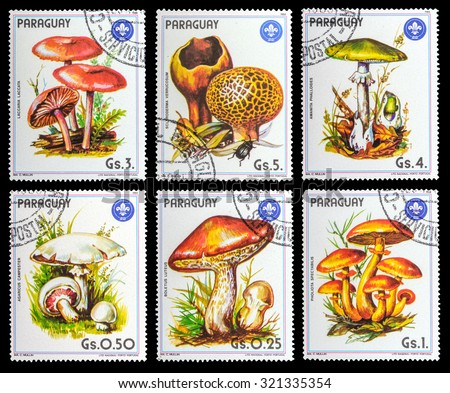 PARAGUAY - CIRCA 1984: A set of postage stamps printed in the Paraguay, shows series mushrooms, circa 1984 - stock photo