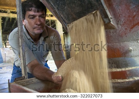 Parana, Brazil, october 28, 2009. farmer checks the feed of a mixture of soybeans, corn and oats, coming out of a grain silo on his farm in Parana