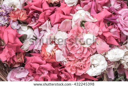 Parched rose  petals in the basket - stock photo