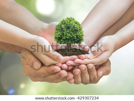 Parent and children planting together big tree on family hands on blur nature greenery background: World environment day reforesting eco bio arbor CSR ESG ecosystems reforestation reform concept - stock photo