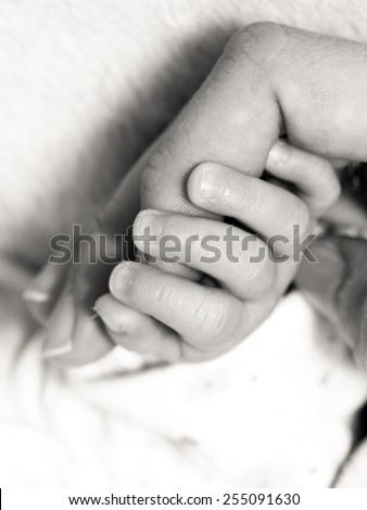 Parenting and love concept. Closeup newborn baby holding his mothers finger. Square format, black white photo - stock photo
