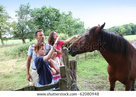 Parents and children petting horses in countryside - stock photo