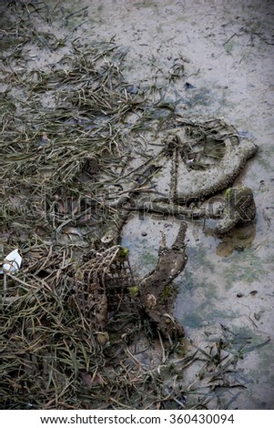 Paris, France - January 5, 2016: Old bike buried in the sludge and algae during the emptying of the canal St-Martin