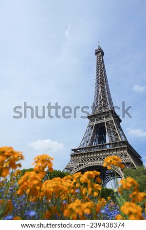 Paris in the spring with flowers at the Eiffel Tower in blue sky