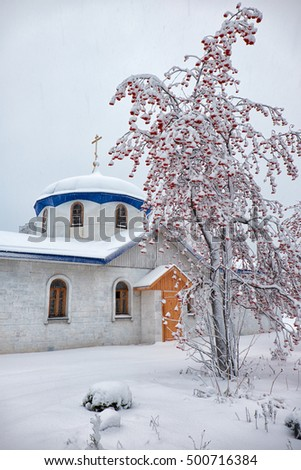 Parish of the Annunciation in Novosibirsk in winter season under rowanberry tree covered by snow