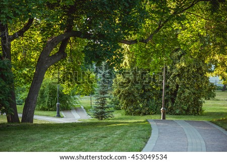 Park alley, green trees and lawn in sunset light