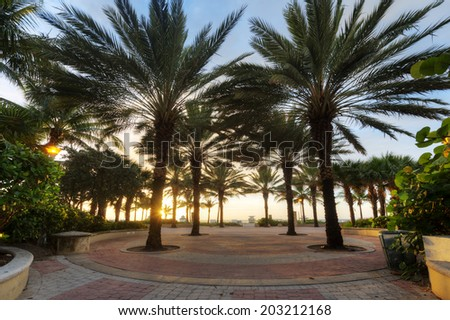 Park at South Beach in Miami, Florida at Sunrise.