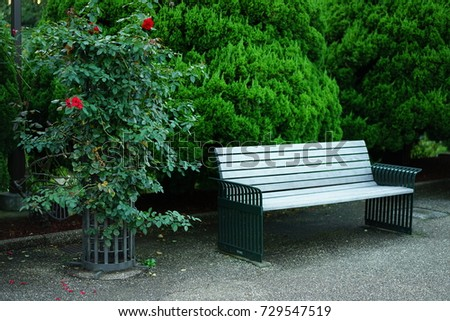 https://thumb1.shutterstock.com/display_pic_with_logo/167494286/729547519/stock-photo-park-bench-729547519.jpg
