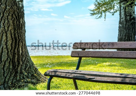 Park bench besides Palic lake in Serbia / Brown park bench still in excellent condition, used by the people who are walking beside Palic lake. Photo was taken on a sunny day, about noon. - stock photo