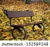 Park bench surrounded by autumn yellow leaves. - stock photo