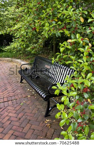 Park bench surrounded by holly bushes with red berries