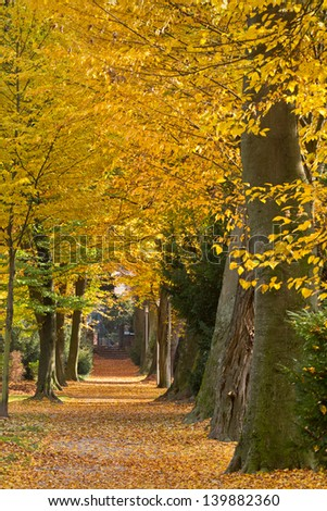 Park in autumn, Karlsruhe, Germany - stock photo