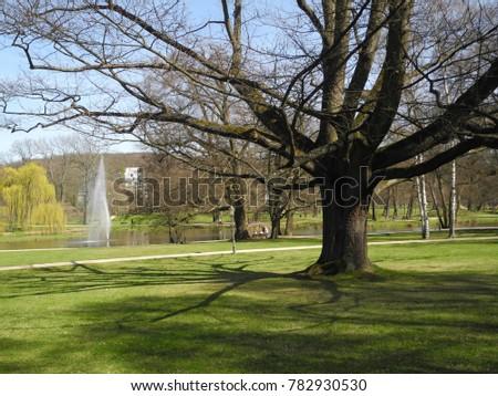 Park Bad Homburg Germany Stock Photo (Royalty Free) 782930530 ...