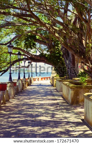 Park In San Juan - stock photo