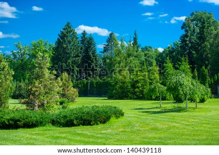 Park landscape with green grass, trees and blue sky - stock photo