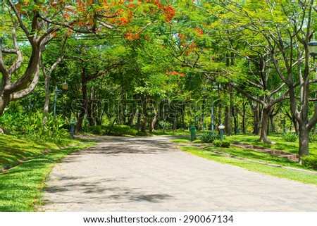 Park, Pathway to garden - stock photo