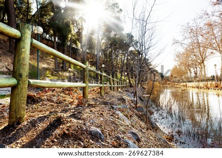 Park sunset. City park and sunbeam. Outdoors landscape - stock photo