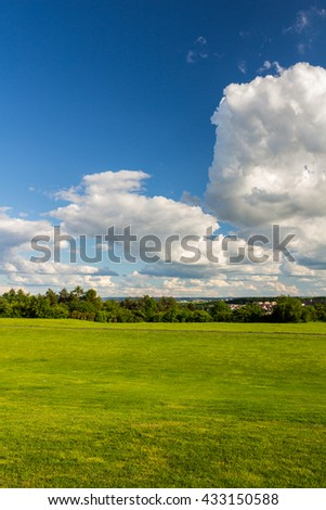 Park with green meadow and forest. Green meadow and blue sky. Summer scene.