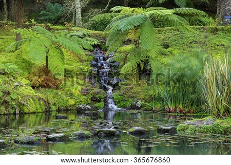 Park with palms and waterfall on Azores