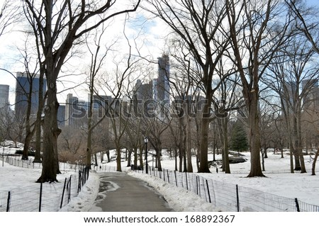 Parkway in the Central Park from New York, United States of America  in a sunny winter day.