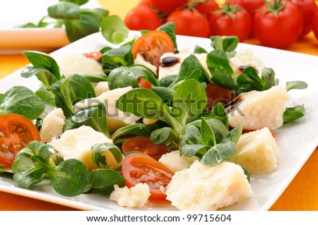 Parmesan cheese with tomato and valerian salad, appetizer - stock photo