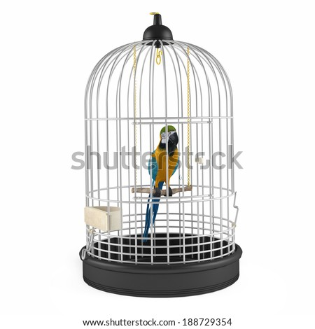 a caged parrot autobiography essays Autobiography of a caged bird life in the cage is harsh with limited privileges and freedom cages refer to things that prevent one from making a substantial progress in life.