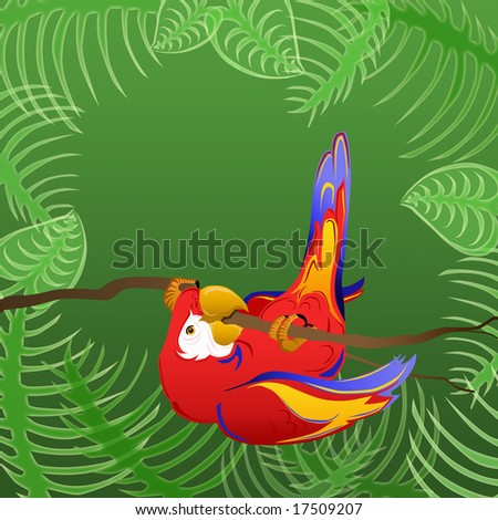Parrot in the trees - stock photo