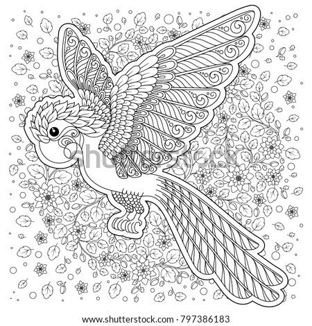 Parrot Tropical Bird Coloring Book Adult Stock Illustration ...
