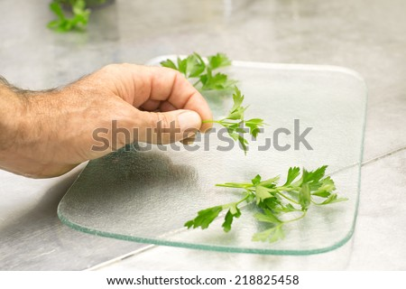 parsley decoration over transparent plate