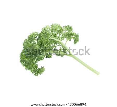 parsley isolated on a white background - stock photo