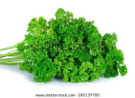 parsley isolated on the white background. - stock photo