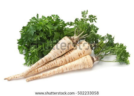 Parsley vegetable root isolated on white background