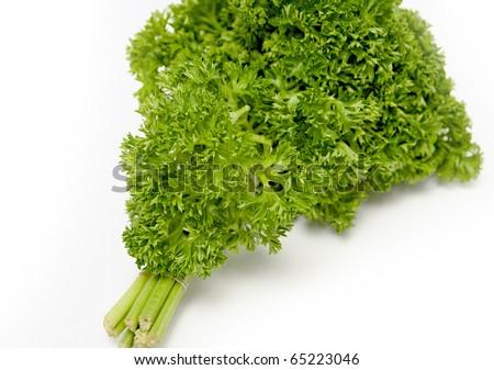 parsley verdure on white background - stock photo