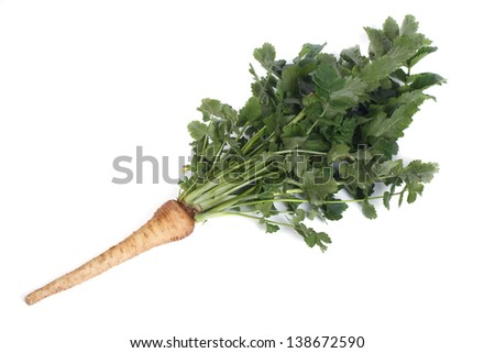 parsnip with green leaves isolated on white background