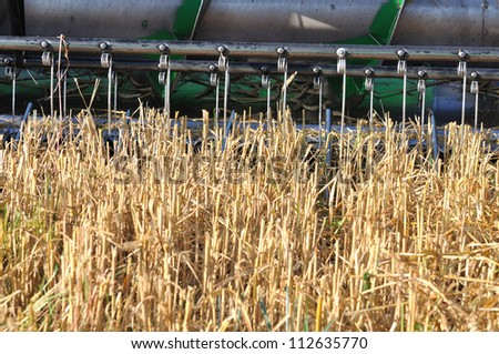 part of a combine cutting a field of wheat - stock photo