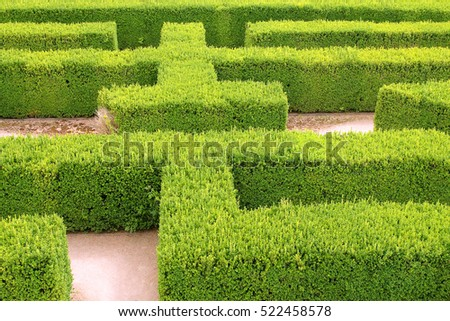Part of a natural maze at a castle in Europe
