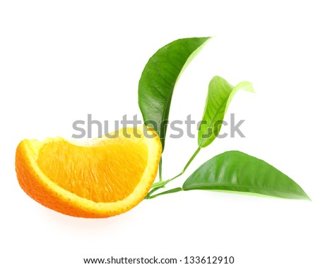 Part of orange and branch with green leaf. Placed on white background. Close-up. Studio photography. - stock photo