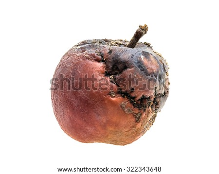 Partly rotten red apple with fungus on white background