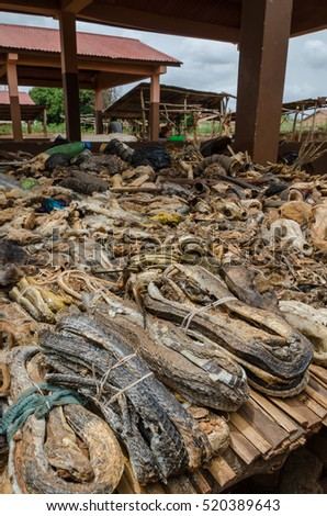 Parts of dead animals offered as cures and talismans on outdoor voodoo fetish market in Benin
