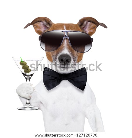 party dog toasting with a martini glass with olives - stock photo