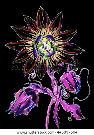 Passiflora exotic Bali flower in blossom. Hand drawn vibrant decorative outline watercolor tropical flower on black background. Botanical illustration for wedding printing, card, invitation. Thai east