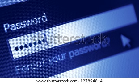 Password box  in Internet Browser on Computer Screen