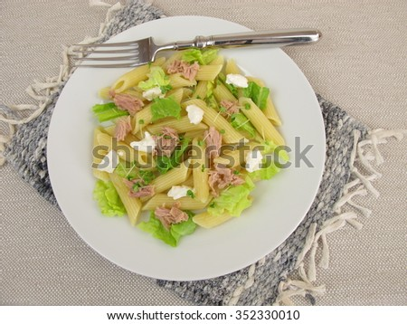 Pasta salad with tuna, lettuce, horseradish cream and basil sprouts - stock photo