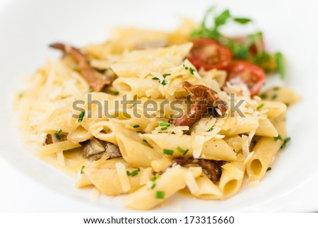 Pasta with porcini and chanterelle mushrooms in light cream sauce - stock photo
