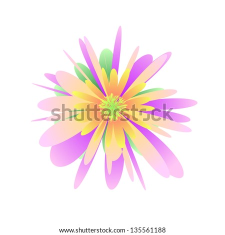 Pastel flower on the white background - stock photo