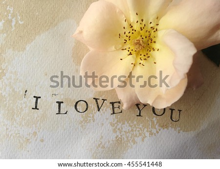 Pastel hybrid tea rose on watercolor paper with the words I love you - stock photo
